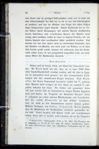 Image of Darwin-F914.1-1868-00054