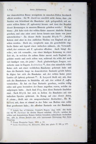 Image of Darwin-F914.1-1868-00055