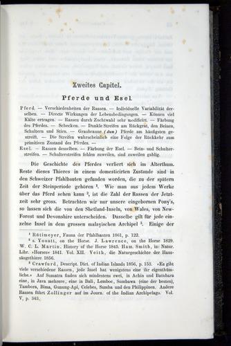 Image of Darwin-F914.1-1868-00061