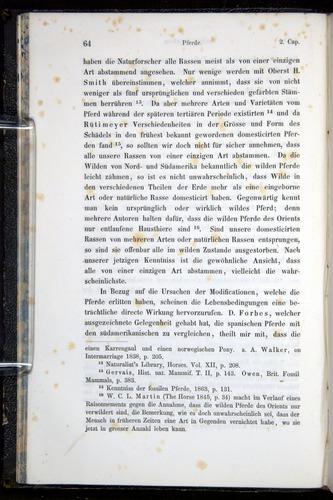Image of Darwin-F914.1-1868-00064
