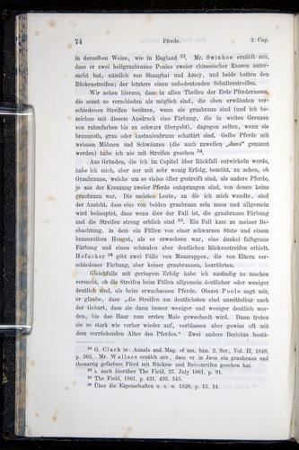 Image of Darwin-F914.1-1868-00074