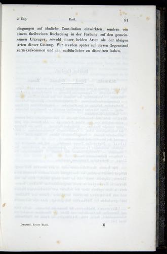Image of Darwin-F914.1-1868-00081