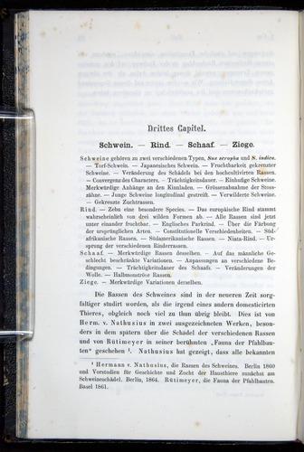 Image of Darwin-F914.1-1868-00082