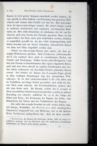 Image of Darwin-F914.1-1868-00083