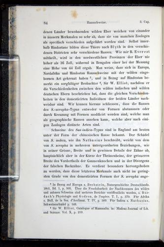 Image of Darwin-F914.1-1868-00084