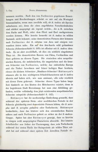 Image of Darwin-F914.1-1868-00085