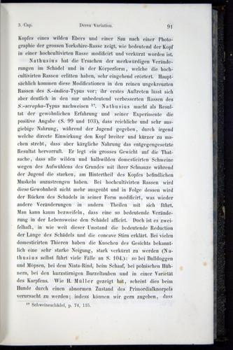 Image of Darwin-F914.1-1868-00091