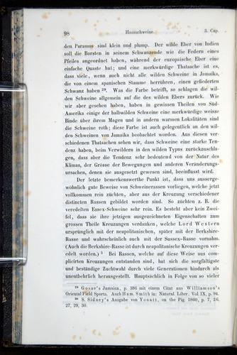 Image of Darwin-F914.1-1868-00098