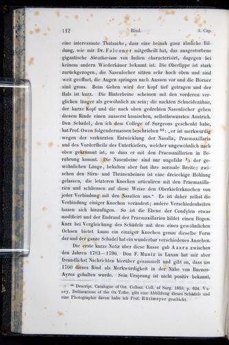 Image of Darwin-F914.1-1868-00112