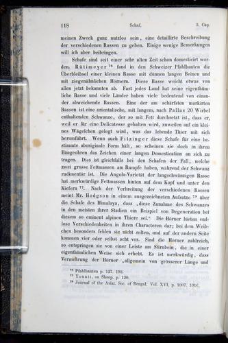 Image of Darwin-F914.1-1868-00118