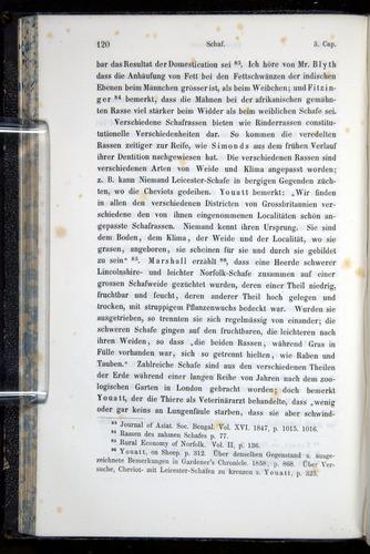 Image of Darwin-F914.1-1868-00120