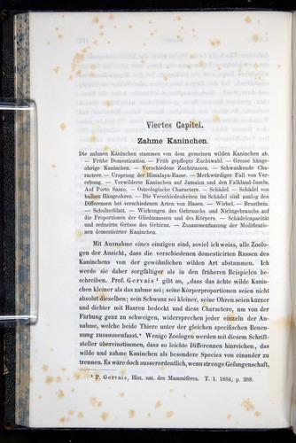 Image of Darwin-F914.1-1868-00128