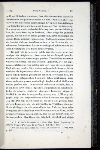 Image of Darwin-F914.1-1868-00131