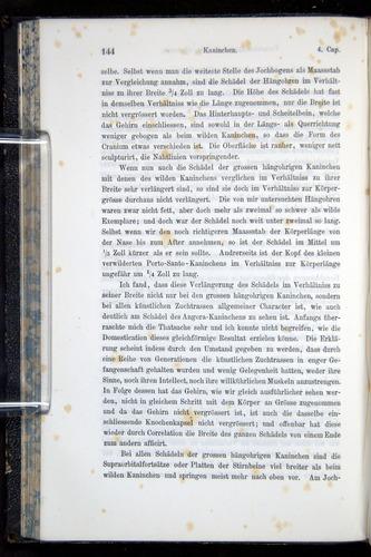 Image of Darwin-F914.1-1868-00144
