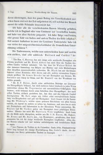 Image of Darwin-F914.1-1868-00163