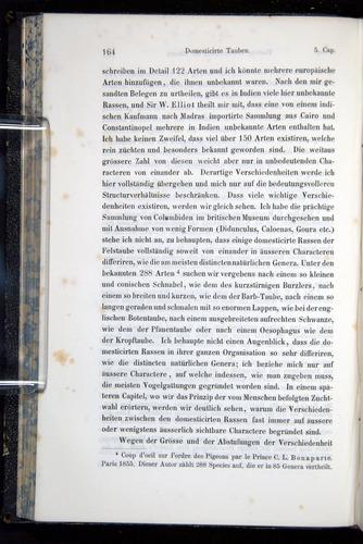 Image of Darwin-F914.1-1868-00164