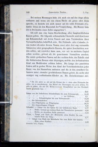 Image of Darwin-F914.1-1868-00166