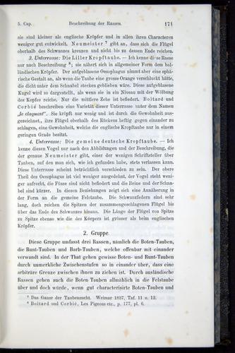 Image of Darwin-F914.1-1868-00171