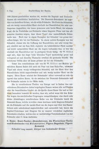 Image of Darwin-F914.1-1868-00175