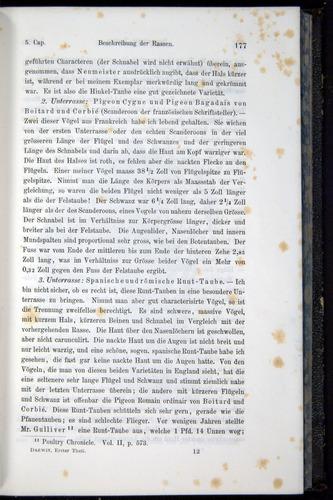 Image of Darwin-F914.1-1868-00177