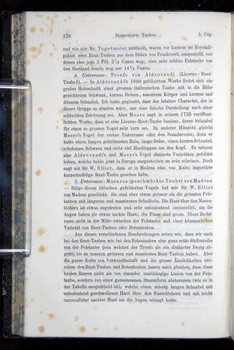 Image of Darwin-F914.1-1868-00178