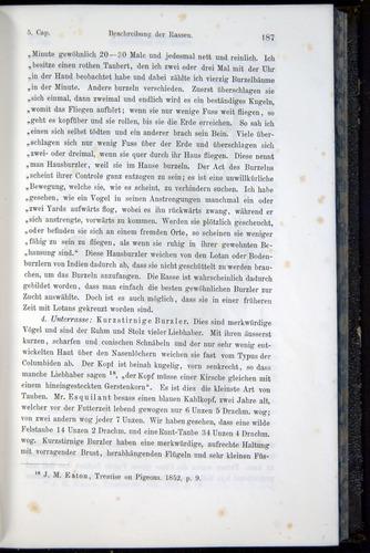 Image of Darwin-F914.1-1868-00187