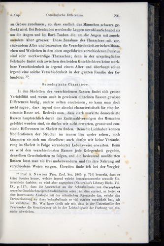 Image of Darwin-F914.1-1868-00201