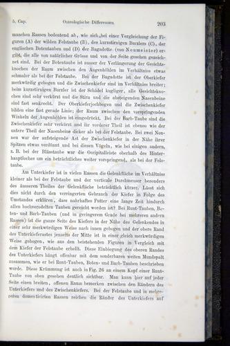 Image of Darwin-F914.1-1868-00203