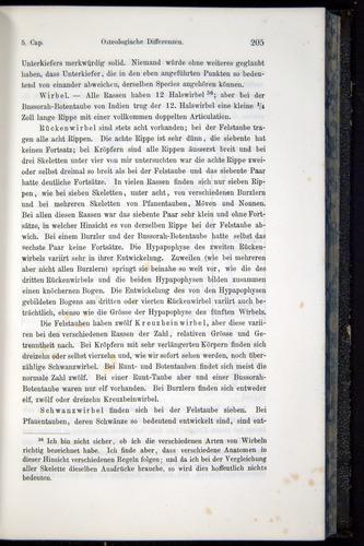 Image of Darwin-F914.1-1868-00205