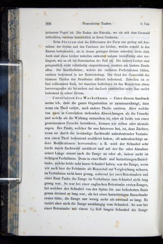 Image of Darwin-F914.1-1868-00208