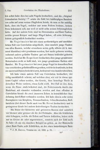 Image of Darwin-F914.1-1868-00211