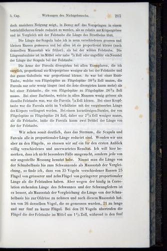 Image of Darwin-F914.1-1868-00217