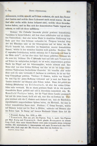 Image of Darwin-F914.1-1868-00225
