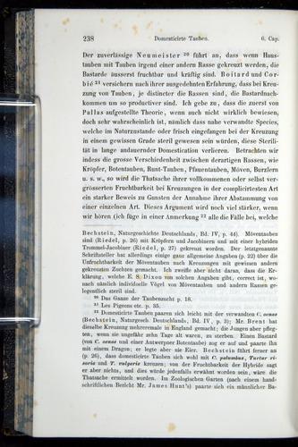 Image of Darwin-F914.1-1868-00238