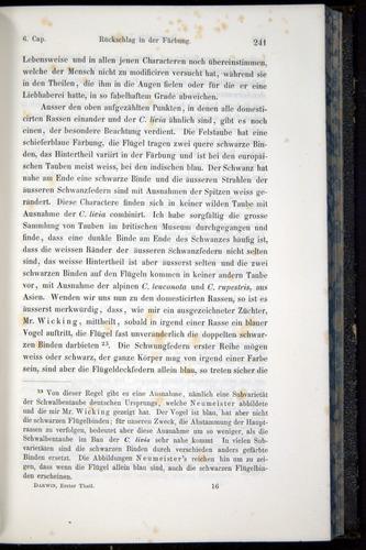 Image of Darwin-F914.1-1868-00241