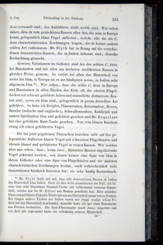 Image of Darwin-F914.1-1868-00243