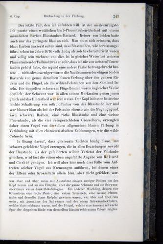 Image of Darwin-F914.1-1868-00247