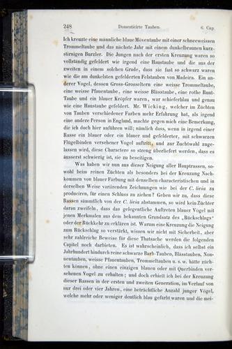 Image of Darwin-F914.1-1868-00248