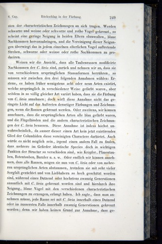 Image of Darwin-F914.1-1868-00249