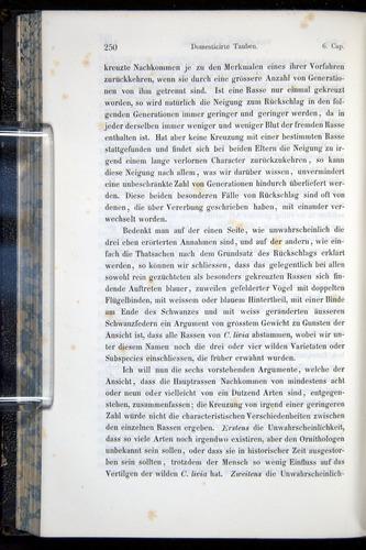 Image of Darwin-F914.1-1868-00250