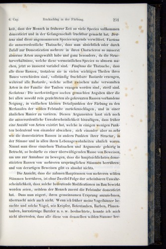 Image of Darwin-F914.1-1868-00251