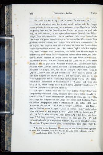 Image of Darwin-F914.1-1868-00256