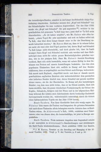 Image of Darwin-F914.1-1868-00260