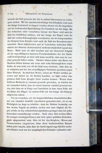 Image of Darwin-F914.1-1868-00271