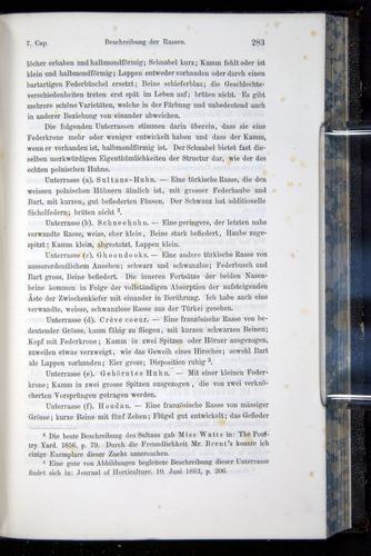 Image of Darwin-F914.1-1868-00283