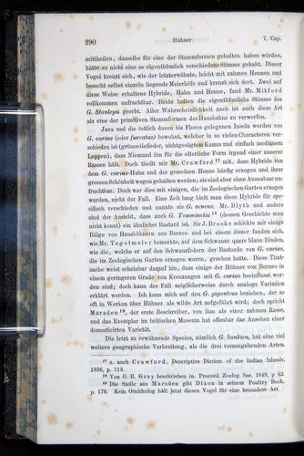 Image of Darwin-F914.1-1868-00290