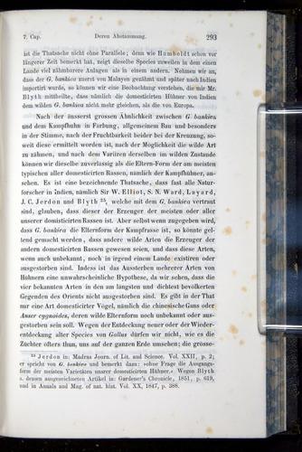 Image of Darwin-F914.1-1868-00293