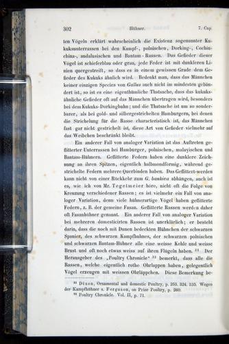 Image of Darwin-F914.1-1868-00302