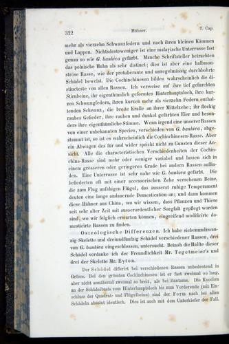 Image of Darwin-F914.1-1868-00322
