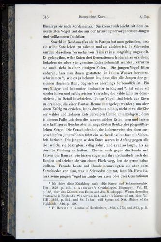 Image of Darwin-F914.1-1868-00346